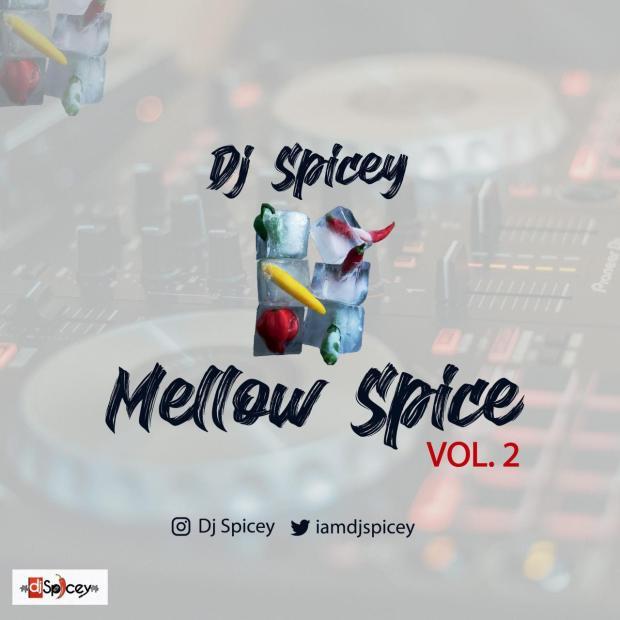 Dj Spicey - Mellow Spice (The Mix Vol. 2)
