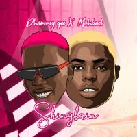 Dammygee & Mohbad – Shingbain
