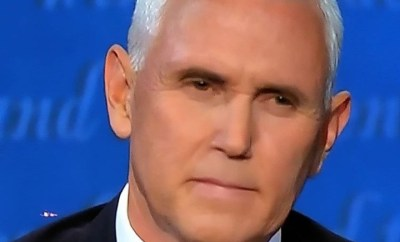 Americans react after fly landed on Mike Pence