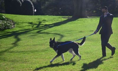 Major is walked by a staff member in the White House grounds on 29 March 2021