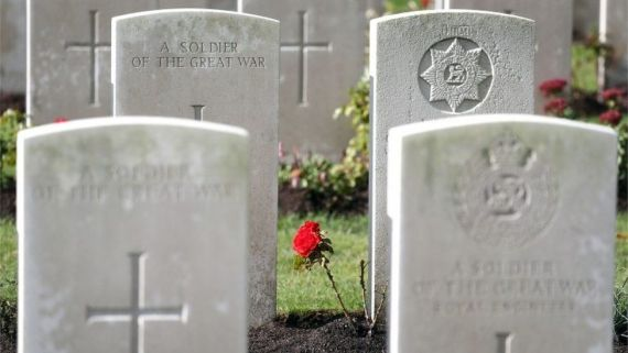 A rose growing between the headstones at the Commonwealth War Graves Commission's Wytschaete Military Cemetery, near Ypres, Belgium