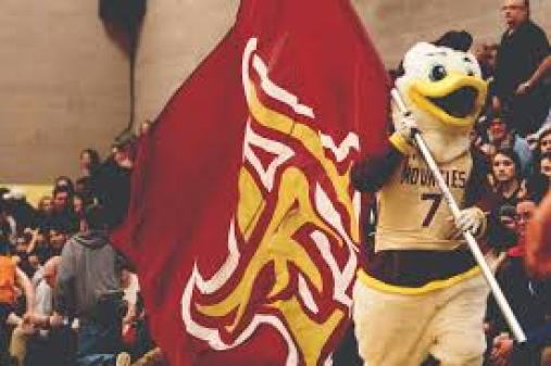 Image result for mount allison mounties mascot