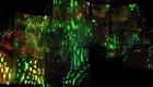 vlcsnap-2016-02-15-21h33m44s078
