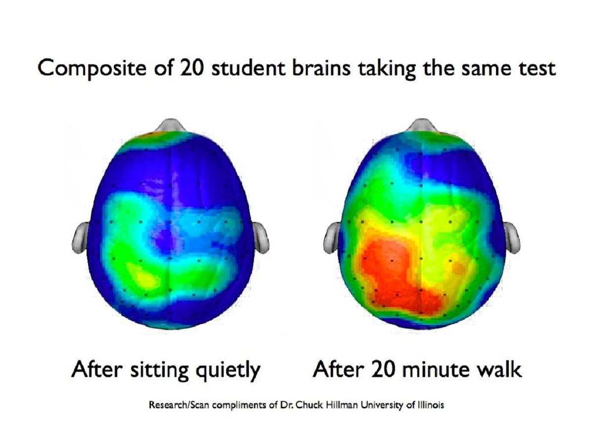 Physical Literacy And Children Making Your Kids Smarter
