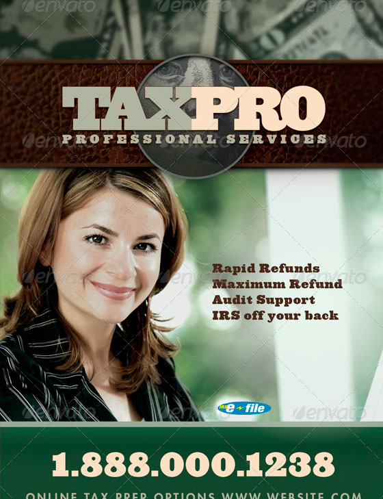 Tax Pro Flyer and Business Card