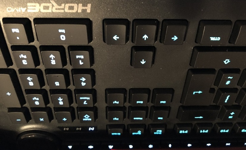 Review: Roccat Horde Aimo Gaming Keyboard