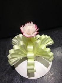 Leek display Radish Flower
