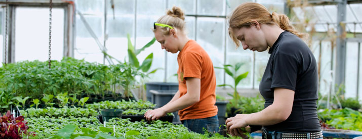 Two students in a greenhouse