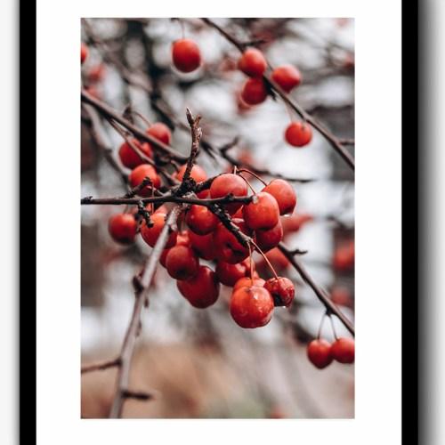 Print Berry Fall