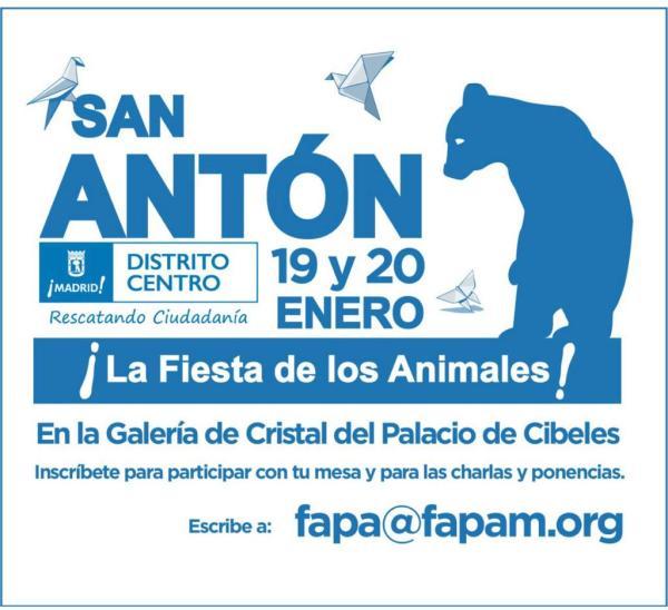 Feria San Antón 4gatosmadrid 2