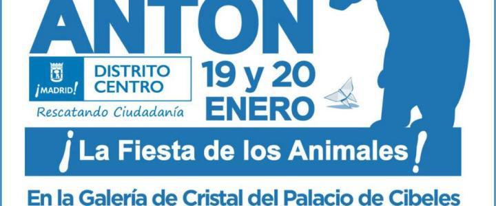 Feria San Antón 2019
