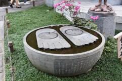 Buddha's footprints?