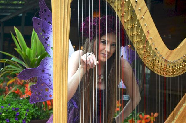 Fairy at Music in the Park at the Dallas Arboretum