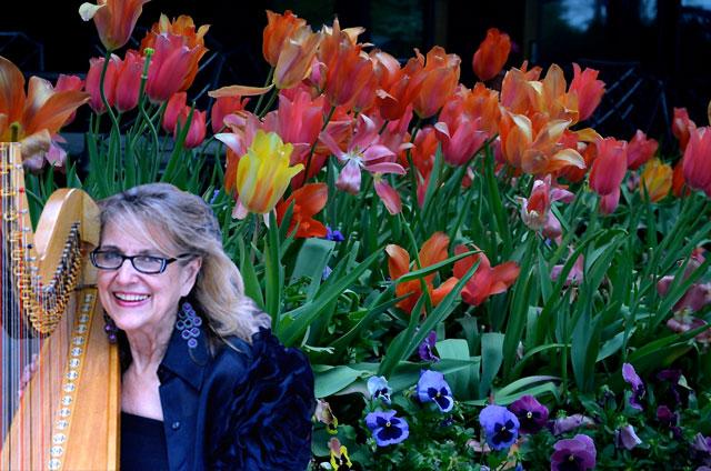 Margaret Atkinson, Dallas Special Event Harpist, at the Dallas Arboretum for Music in the Park
