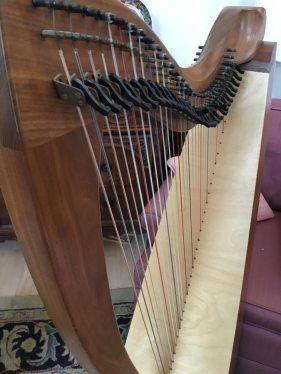 Dusty Strings Crescendo closeup