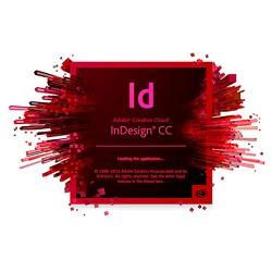 Adobe InDesign CC 2019 v14.0.2.324  With Crack (x64)