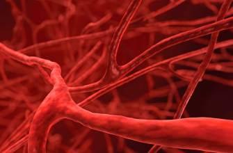 кровеостанавливающее на основе хитозана