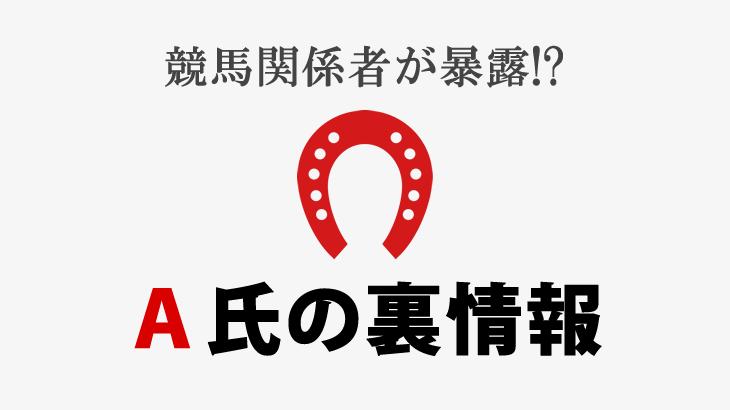 京都4 新馬パドックのイチオシ!【19/01/19】