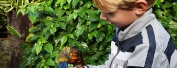 Met kinderen naar Ecomare, zo veel meer dan een zeehondenopvang