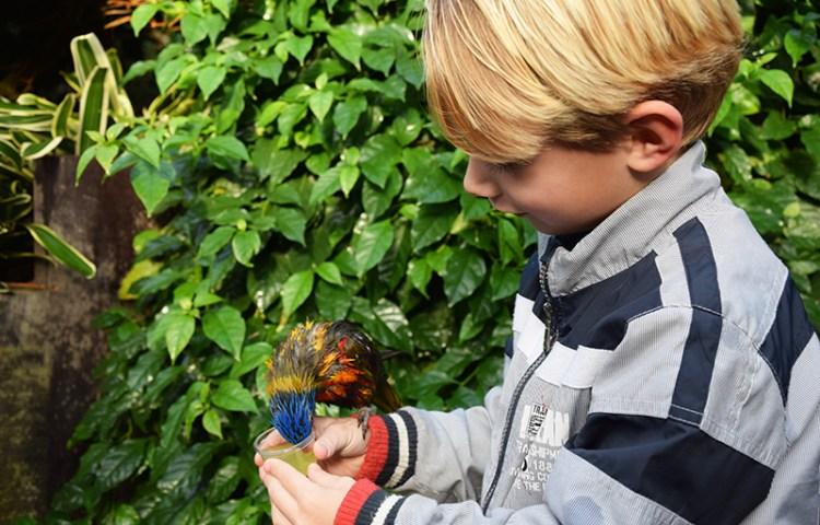 Met kinderen naar Texel Zoo, de verrassing van het eiland