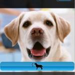 iPhoneをトイカメラ化するApp「CameraBag」