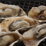 ガッツリ牡蠣が食べたい!♡牡蠣食べ放題メモ