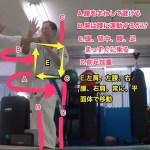 【図解】相手の『突き』のかわし方 かわすのは『腕』ではなく『腰』! #真正会鈴木道場
