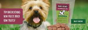 Try our new freeze dried treats