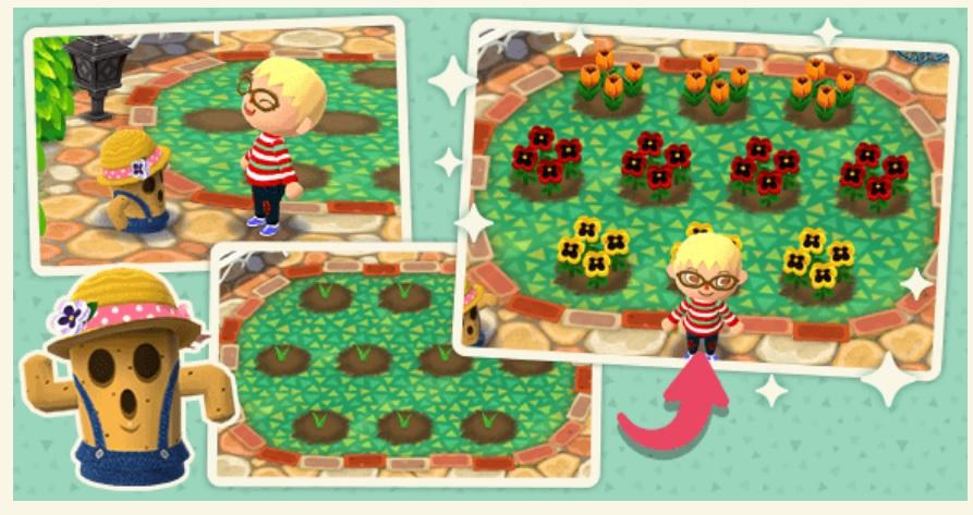 Animal Crossing Pocket Camp - Animal Crossing Pocket Camp, svelati i contenuti del prossimo aggiornamento