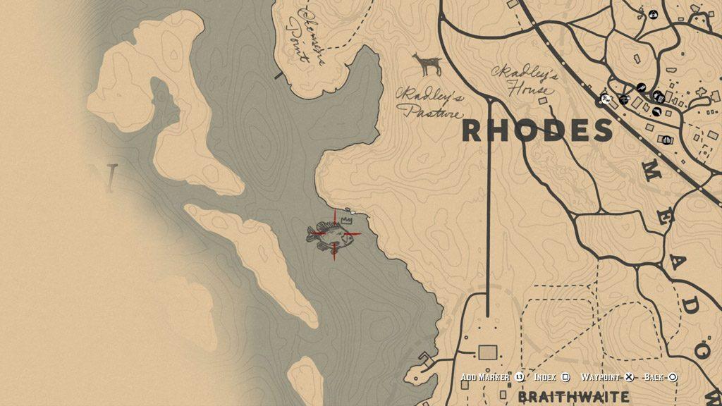 red dead redemption 2 fish bluegill location 1024x576 - Red Dead Redemption 2 - Guida ai pesci leggendari
