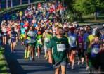 Two Oceans Marathon 2014_-18