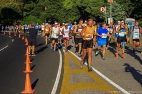 Two Oceans Marathon 2014_-8