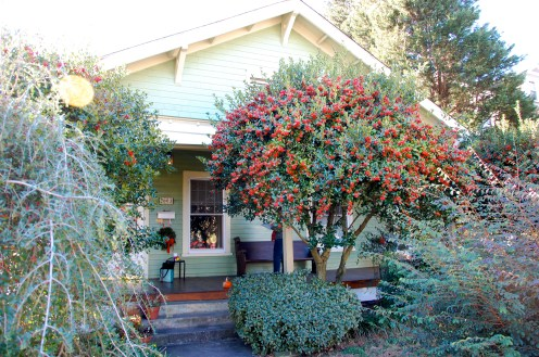 This simple bungalow in Trinity Park was hiding - behind big bushes and a shy paint color.