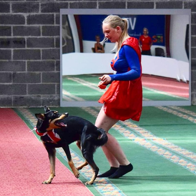 Dog and owner attending dog competitions together happy!
