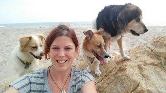 Urlaub in Korsika