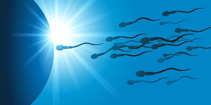 Spermas farbe des Was Harndrang,