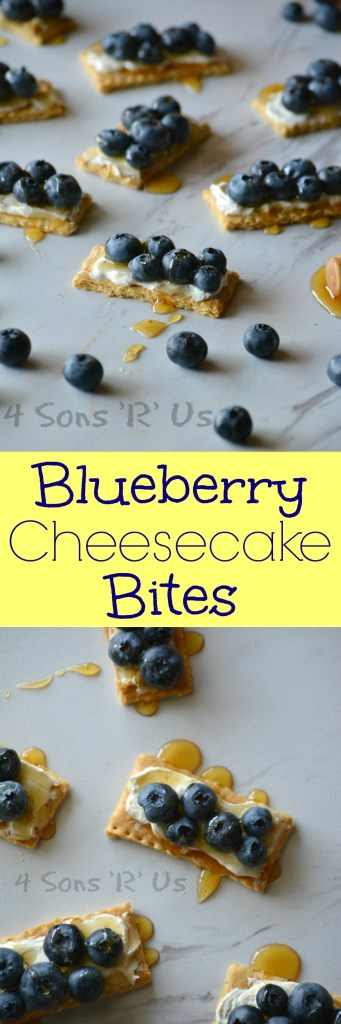 Blueberry Cheesecake Bites Collage