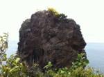 The back of Morgan's head rock
