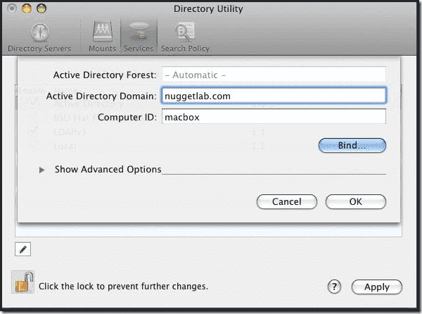 Mac OS X Active Directory Join - Active Directory Name
