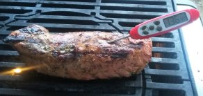 pork-tenderloin-on-grill-with-thermometer