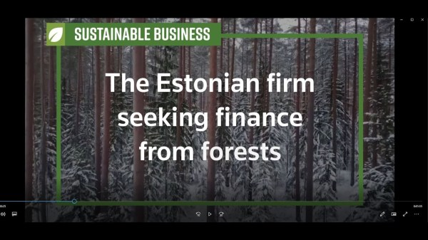 Estonian firm seeks finance from forests