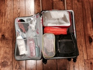 packing cubes for long term travel