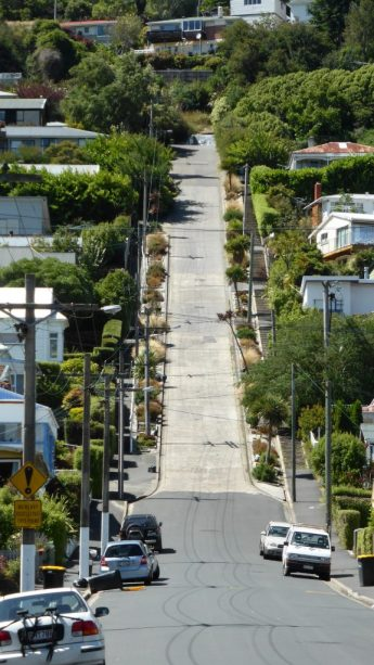 Baldwin Street New Zealand