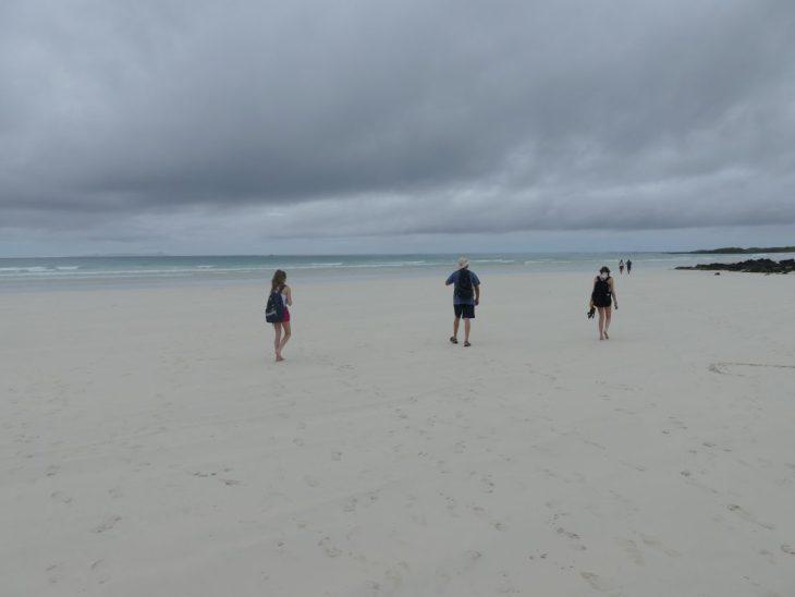 Tortuga Bay Galapagos Family Travel