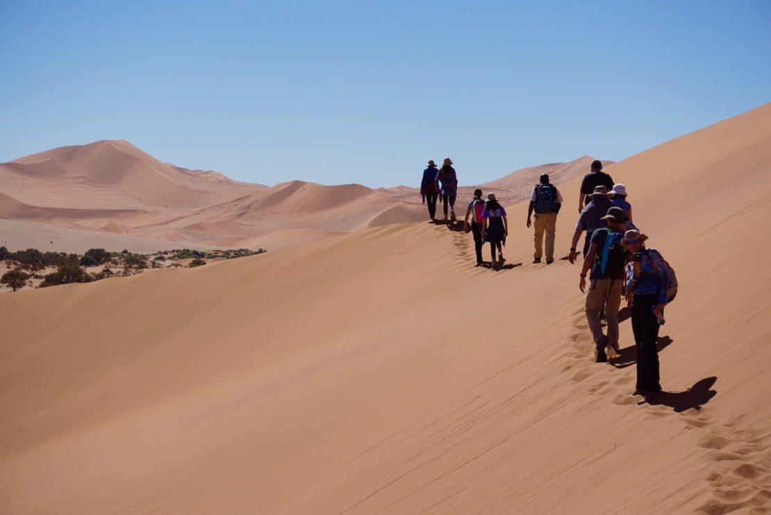 buy travel insurance for the namibia desert