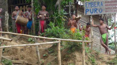 Embera Puru Indian Village Panama