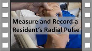 Measure and Record Radial Pulse CNA Skill