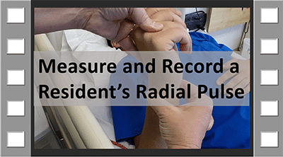Measure and Record Radial Pulse CNA Skill