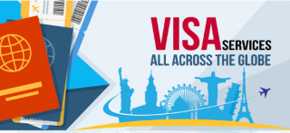 Image result for Visa Consultant