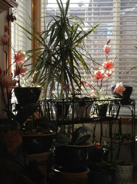 Nice Sunny Sunday morning!